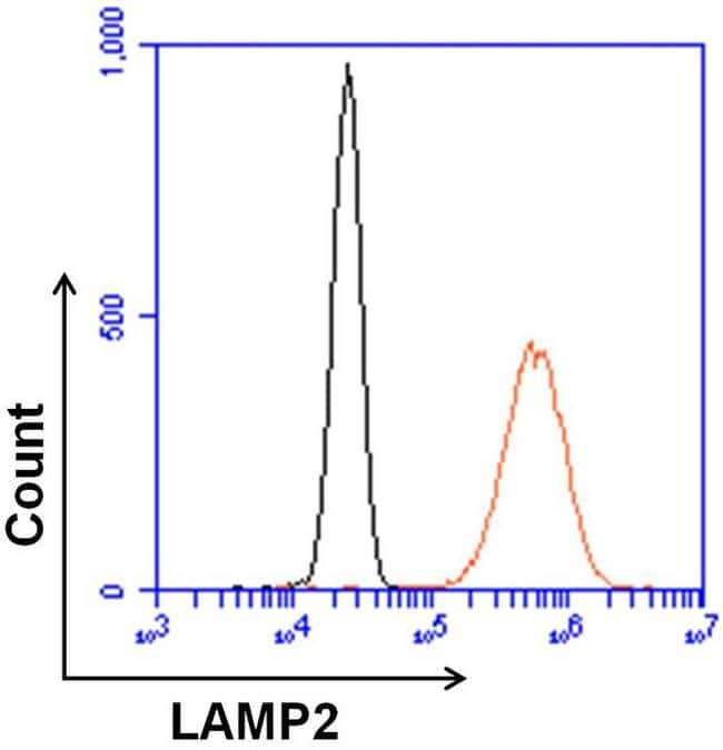 Rat IgG (H+L) Cross-Adsorbed Secondary Antibody in Flow Cytometry (Flow)