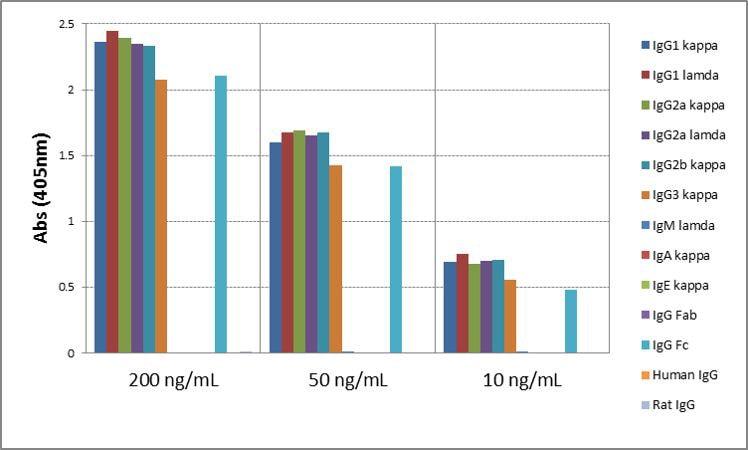 Mouse IgG Secondary Antibody in ELISA (ELISA)