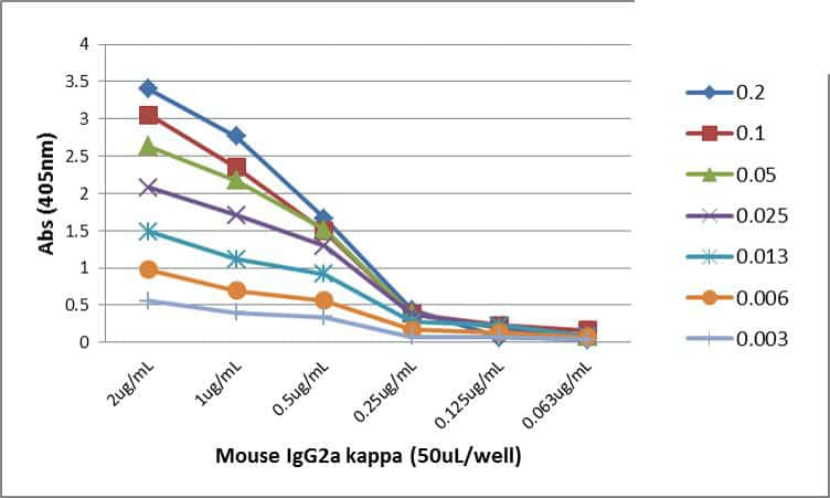 Mouse IgG2a kappa Secondary Antibody in ELISA (ELISA)
