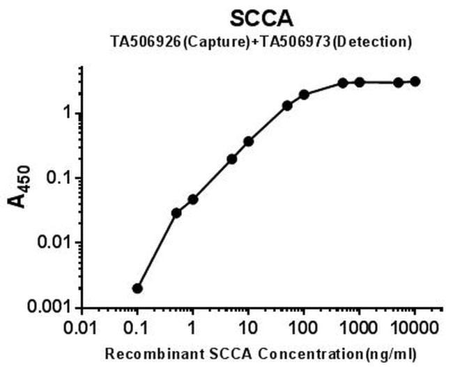 SERPINB3 Antibody in ELISA (ELISA)