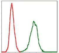 PAI1 Antibody in Flow Cytometry (Flow)