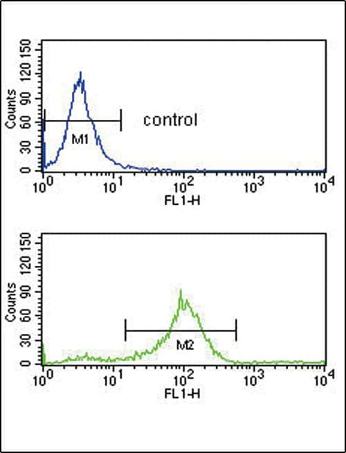 SFRP1 Antibody in Flow Cytometry (Flow)