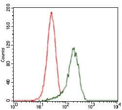 SHH Antibody in Flow Cytometry (Flow)