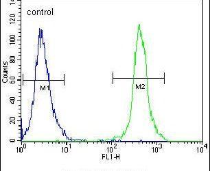 SLC43A2 Antibody in Flow Cytometry (Flow)