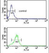 SMPD2 Antibody in Flow Cytometry (Flow)