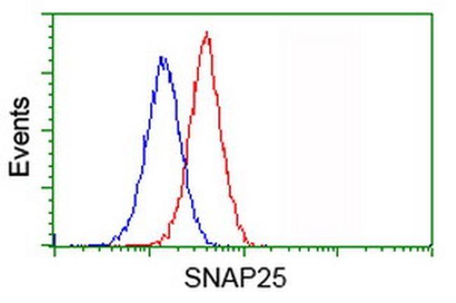 SNAP25 Antibody in Flow Cytometry (Flow)