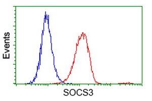 SOCS3 Antibody in Flow Cytometry (Flow)