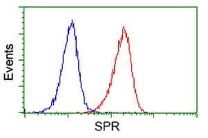 SPR Antibody in Flow Cytometry (Flow)