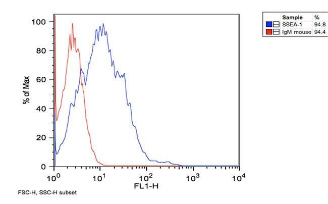 SSEA1 Antibody in Flow Cytometry (Flow)
