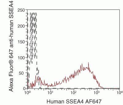 SSEA4 Antibody in Flow Cytometry (Flow)