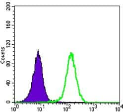 LKB1 Antibody in Flow Cytometry (Flow)