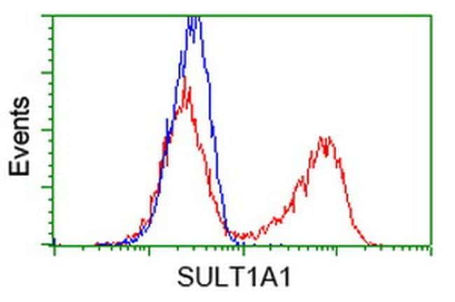 SULT1A1 Antibody in Flow Cytometry (Flow)