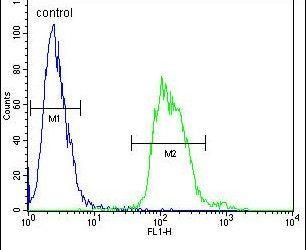 TAC1 C-terminal Peptide Antibody in Flow Cytometry (Flow)