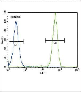 TERT Antibody in Flow Cytometry (Flow)