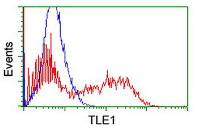 TLE1 Antibody in Flow Cytometry (Flow)
