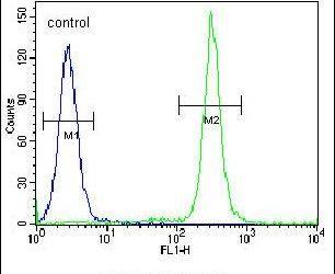 TMEM165 Antibody in Flow Cytometry (Flow)