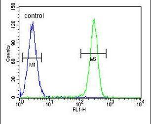 OX40L Antibody in Flow Cytometry (Flow)