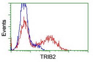 TRIB2 Antibody in Flow Cytometry (Flow)