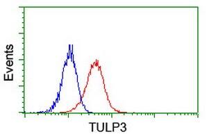 TULP3 Antibody in Flow Cytometry (Flow)