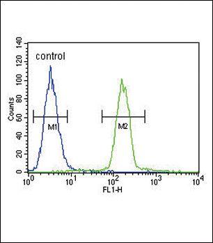 Tyrosinase Antibody in Flow Cytometry (Flow)