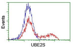UBE2S Antibody in Flow Cytometry (Flow)