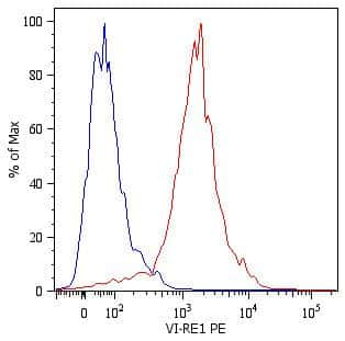Vimentin Antibody in Flow Cytometry (Flow)