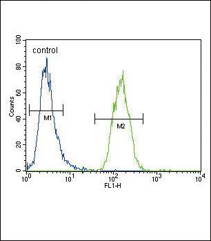 XDH Antibody in Flow Cytometry (Flow)