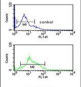 ZO-1 Antibody in Flow Cytometry (Flow)
