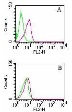 D4-GDI Antibody in Flow Cytometry (Flow)