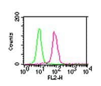 IKK alpha Antibody in Flow Cytometry (Flow)