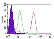 IKK gamma Antibody in Flow Cytometry (Flow)