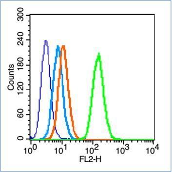 Insulin Receptor alpha Antibody in Flow Cytometry (Flow)