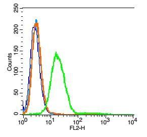 Neurokinin B receptor Antibody in Flow Cytometry (Flow)