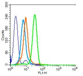 Integrin beta 3 Antibody in Flow Cytometry (Flow)