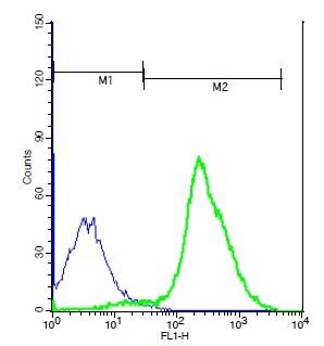 TSHR Antibody in Flow Cytometry (Flow)