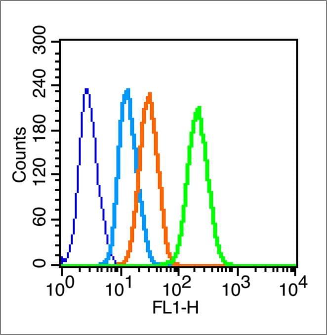 Connexin 43 Antibody in Flow Cytometry (Flow)