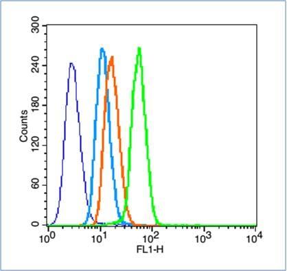 HIF-1 Alpha Antibody in Flow Cytometry (Flow)