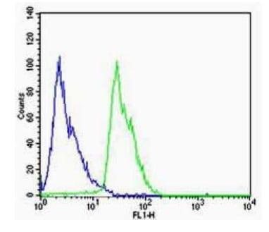 Dopamine Receptor D1 Antibody in Flow Cytometry (Flow)