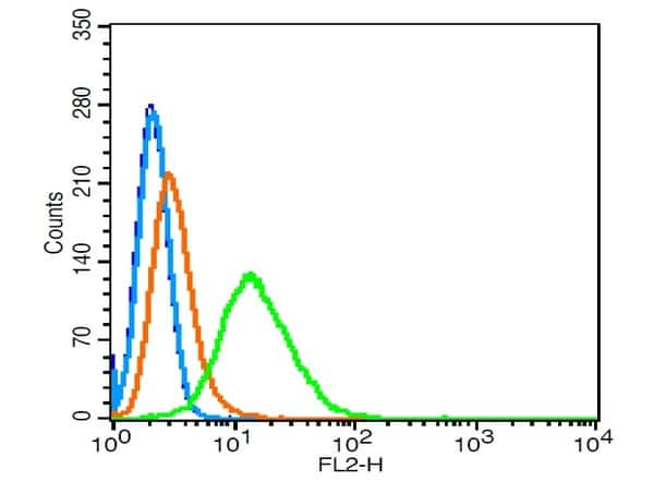 RhoA/C Antibody in Flow Cytometry (Flow)