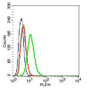 Caveolin-1 Antibody in Flow Cytometry (Flow)