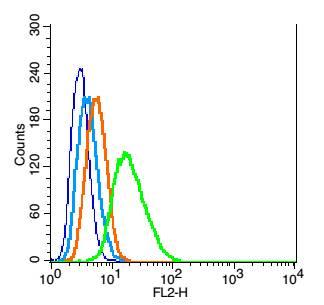 Oct-4BOCT4B-190NT Antibody in Flow Cytometry (Flow)
