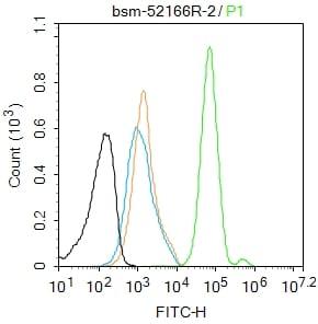 Phospho-HSF1 (Ser326) Antibody in Flow Cytometry (Flow)