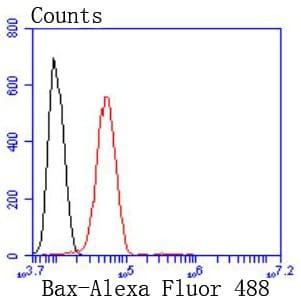 Bax Antibody in Flow Cytometry (Flow)
