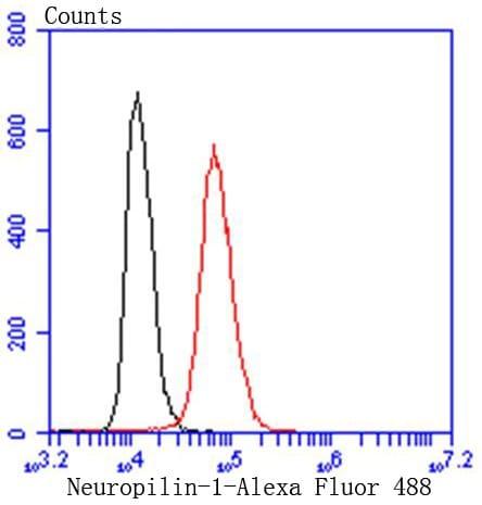 Neuropilin-1 Antibody in Flow Cytometry (Flow)