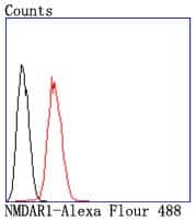 NMDAR1 Antibody in Flow Cytometry (Flow)