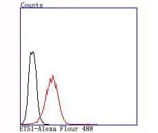 ETS1 Antibody in Flow Cytometry (Flow)