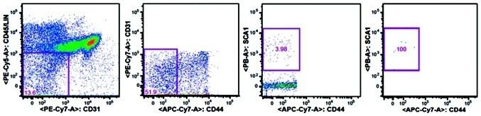 CD45 Antibody, PE (Monoclonal, 30-F11)