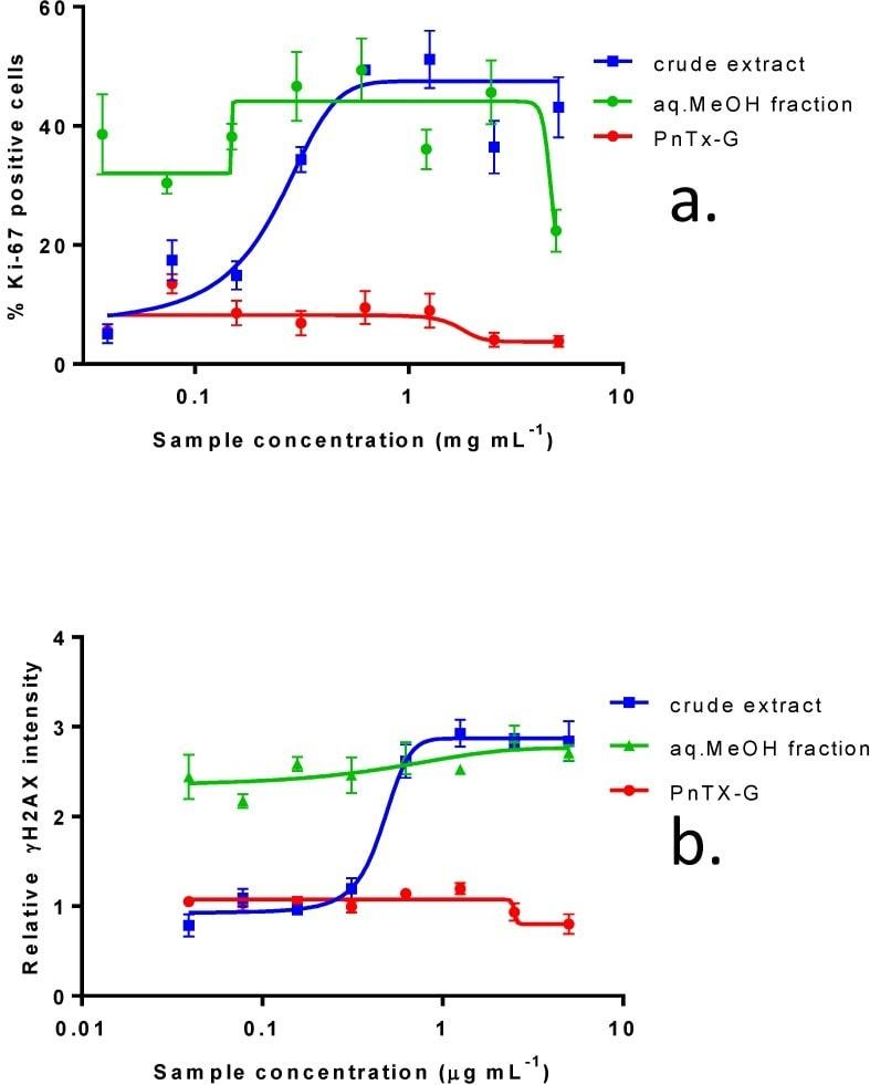 Phospho-Histone H2A.X (Ser140) Antibody