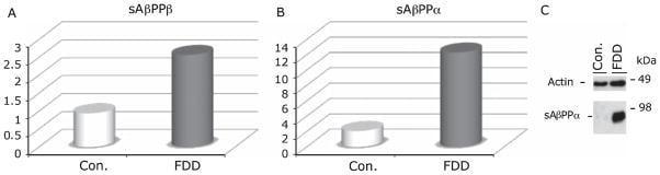 beta Amyloid Antibody in ELISA (ELISA)