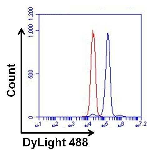 ERK2 Antibody in Flow Cytometry (Flow)